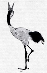 tai chi movement-crane